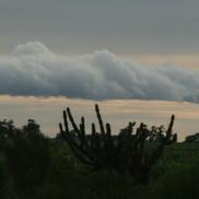 1-Claire P-B-nuage