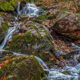 W4 - Geoffrion ruisseau P12