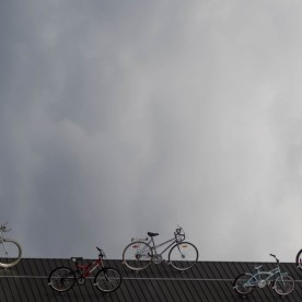W1-m-trotier-celeste byciclette